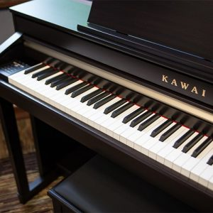 Pianos & Digital Pianos